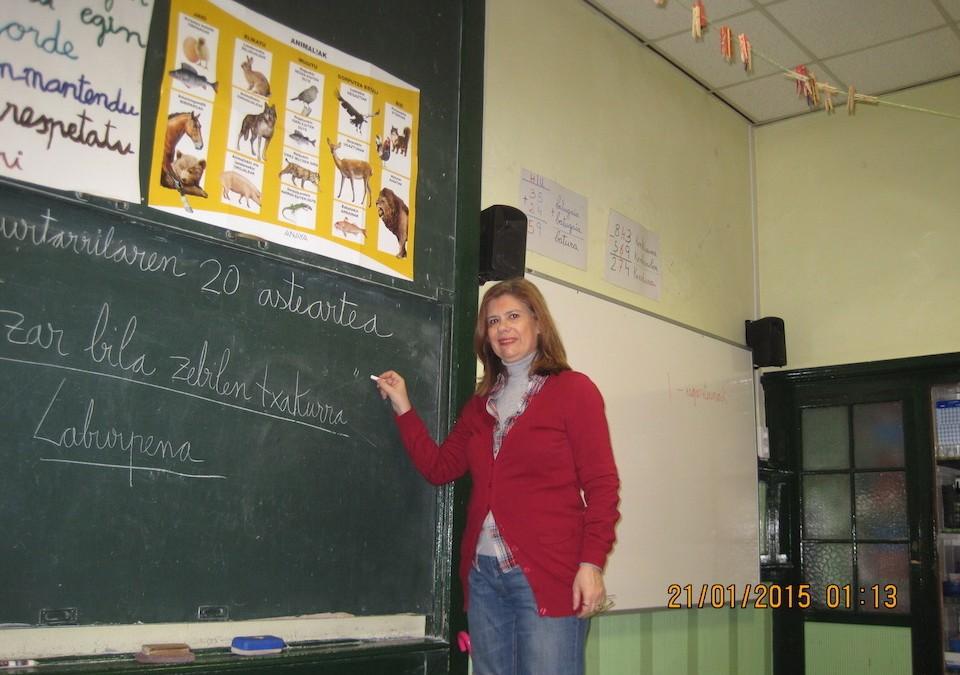 La enseñanza y el profesorado