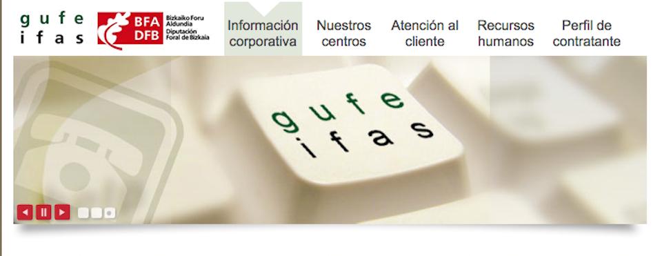 DIPUTACION FORAL DE BIZKAIA IFAS. Instituto Foral de Asistencia Social